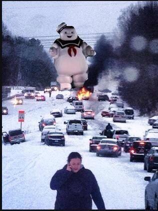 59410 snowmg1 316x422
